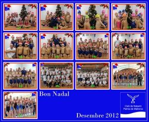 Grups d'entrenament 20102