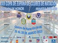 cartel_natacion_copa_div_honor_1div_2013